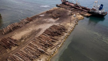 THE SABL LAND GRAB - Papua New Guinea's ongoing human rights scandal